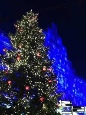 Kerstboom Grote Markt Antwerpen